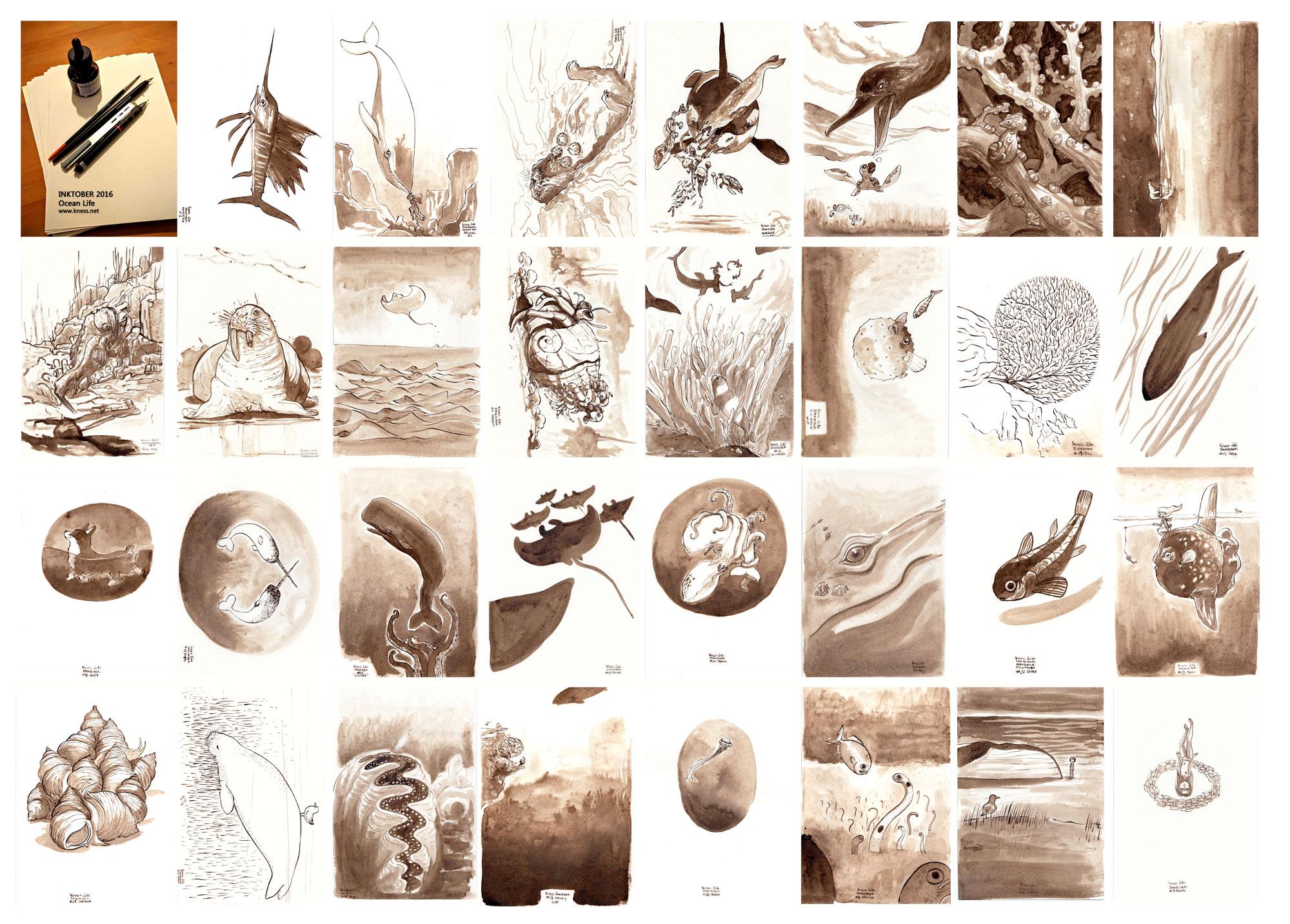 Inktober 2016 - la faune marine + la liste officielle