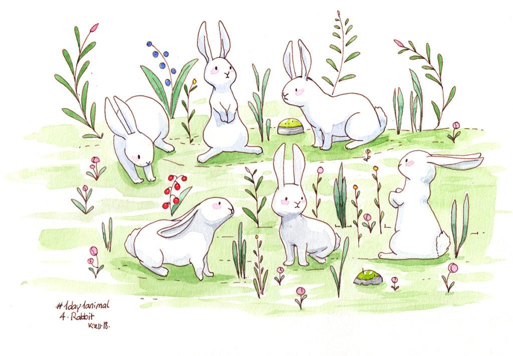 illustratrice montréal - illustration aquarelle lapins blancs
