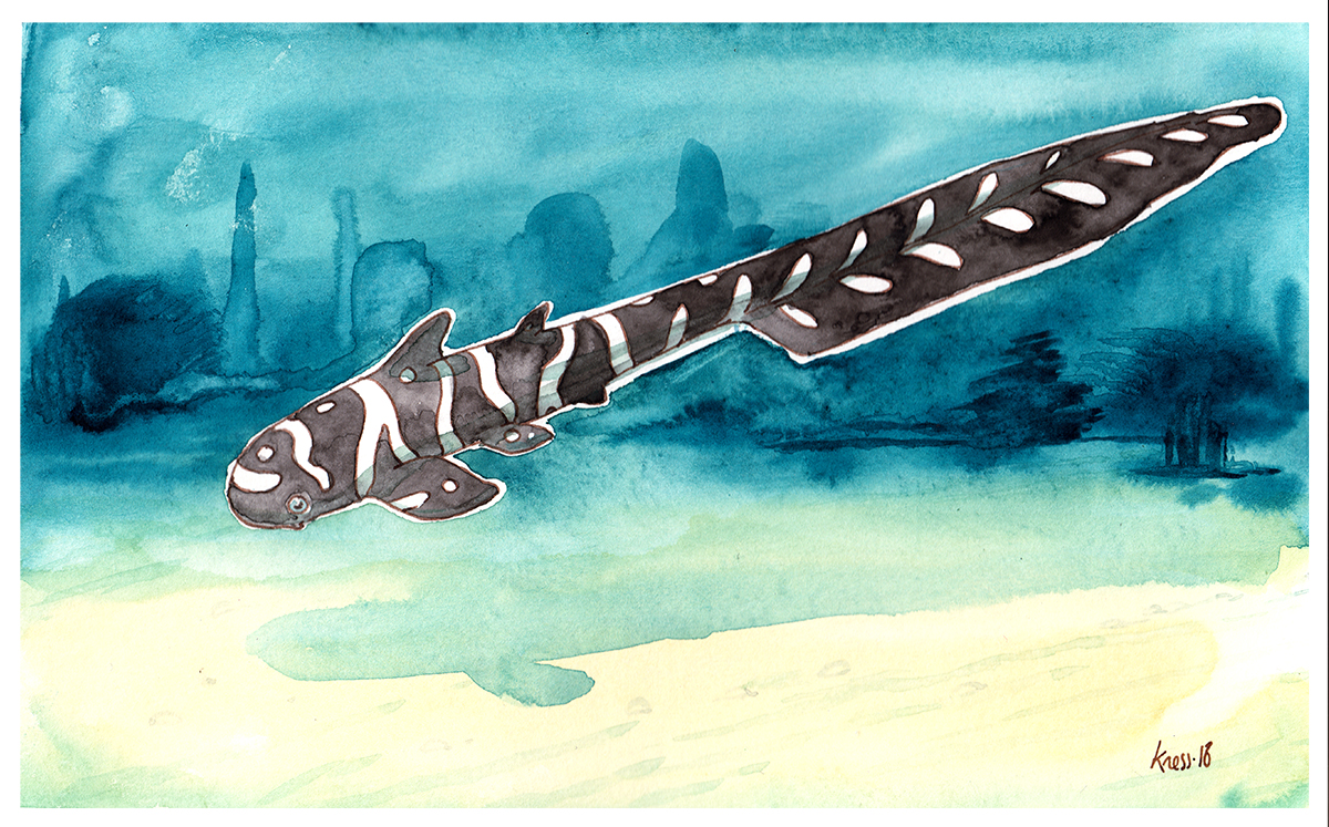 illustration requin zebre aquarelle