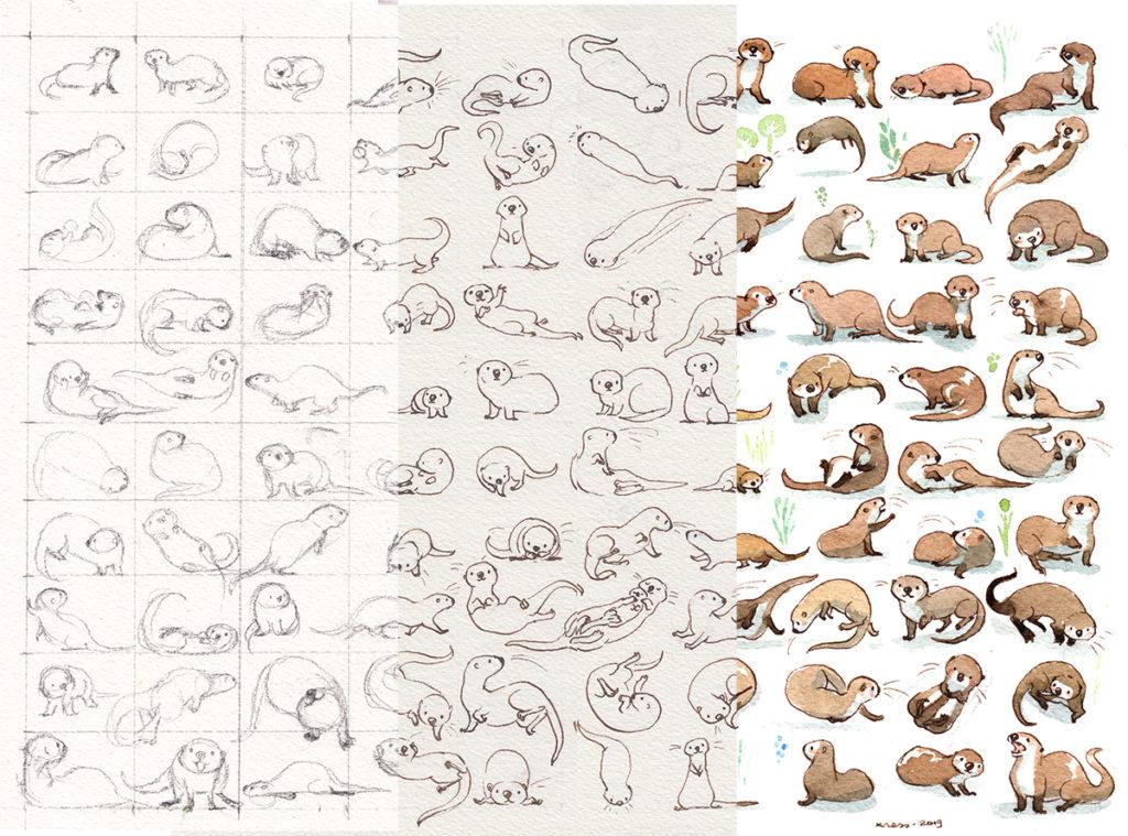etapes-illustration-loutres