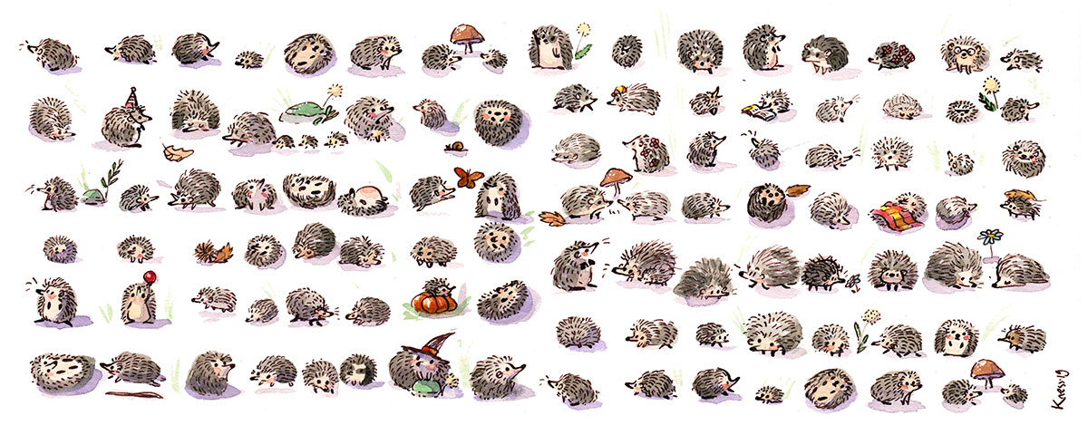 hedgehogs illustration watercolor