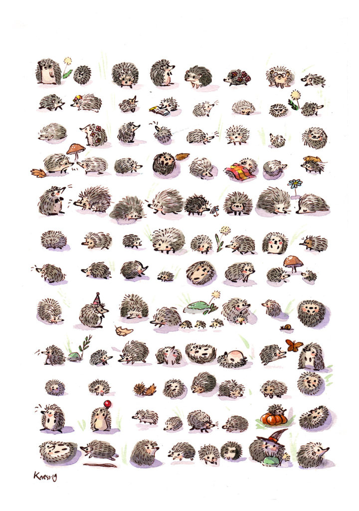 hedgehogs illustration watercolor