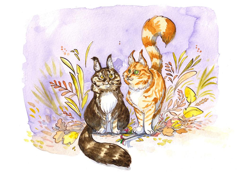 commande illustration chats