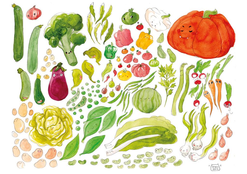 illustration cuisine legumes de saison été