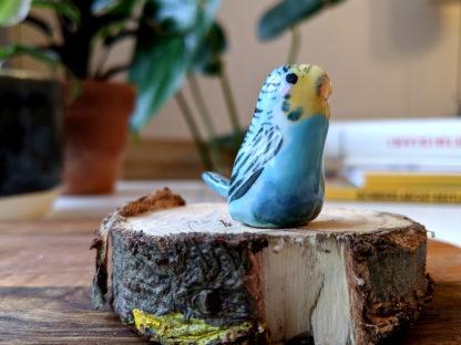 perruche bleue porcelaine