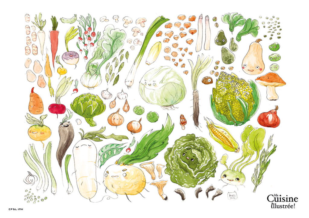 illustrated recipes - winter vegetables