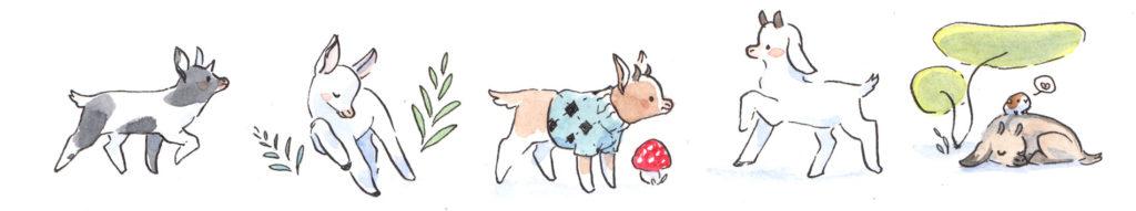 Dessin de chèvres