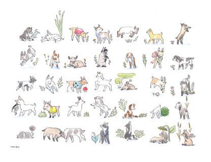 dessin de chèvre fini et scanné