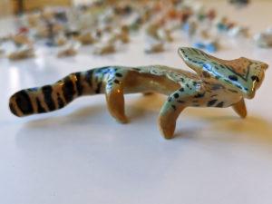 diplocaulus salamander