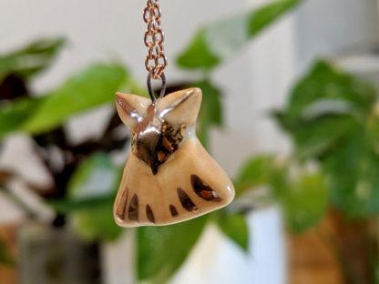 papillon de nuit - moth