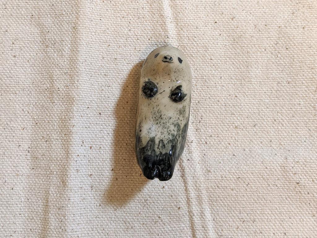 phoque gris chaud