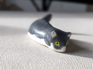 chat gris porcelaine cat