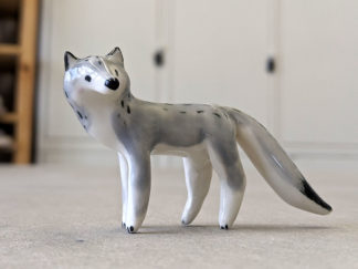Loup gris - Wolf