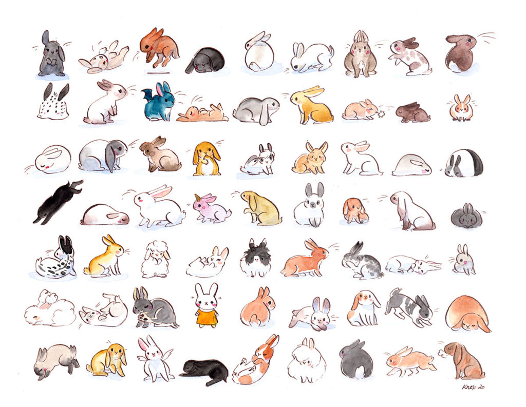 illustration lapins