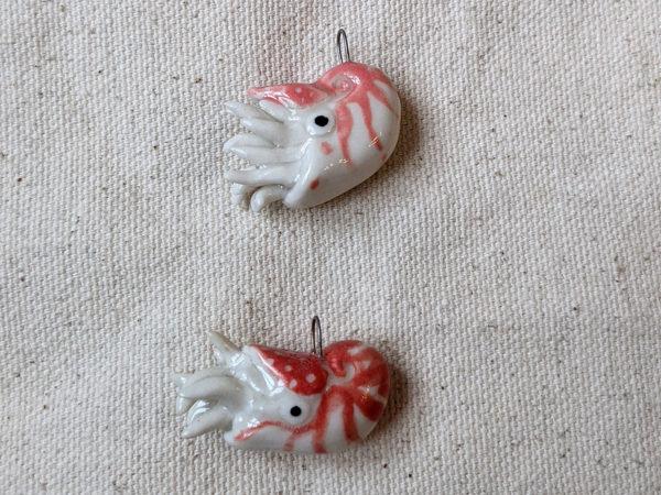 nautilus red pink