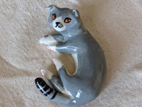 chat scottish fold