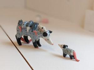 opossum mama
