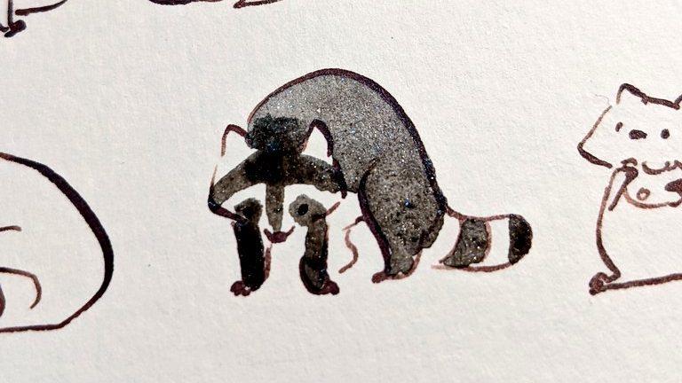 dessin de ratons laveurs - aquarelle noire pailletée