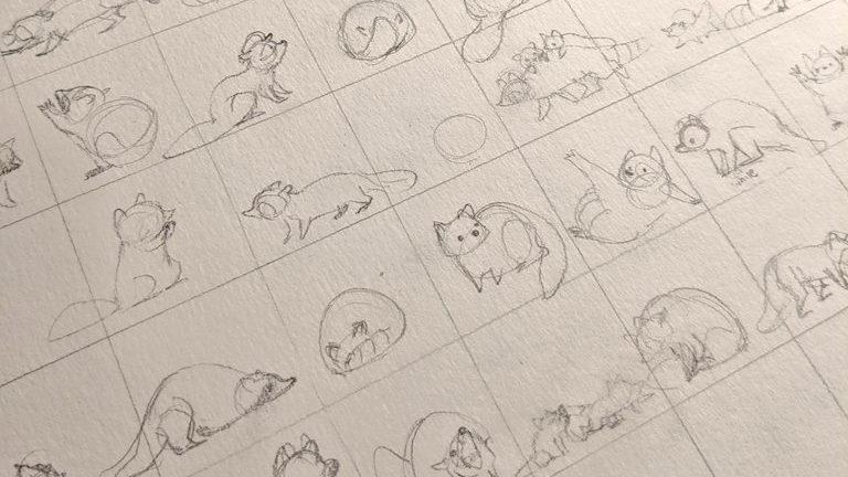 dessin raton laveur crayonné