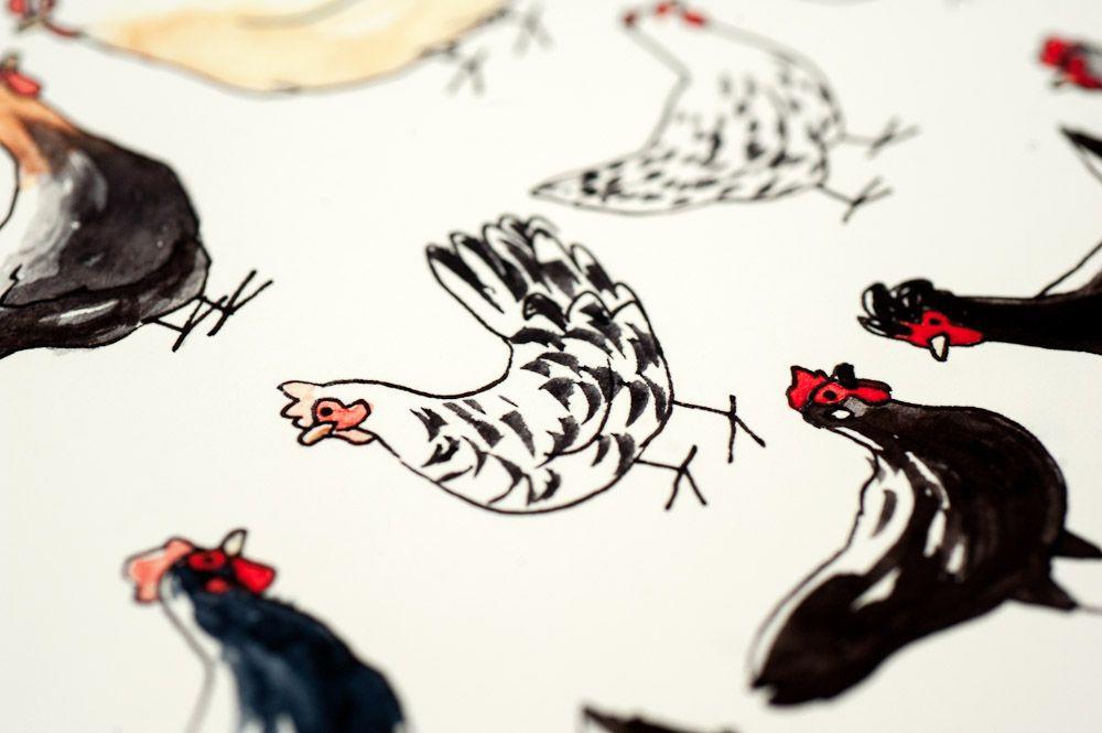 dessin de poules, détail