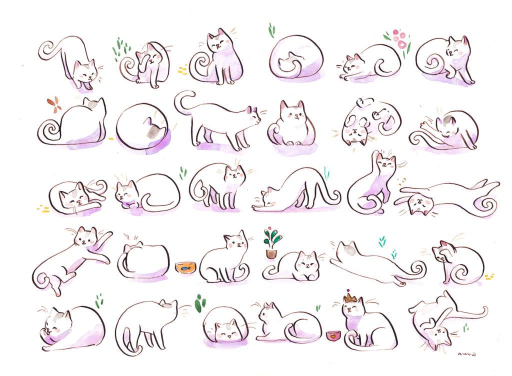 motif de chat blanc portrait personnalisé